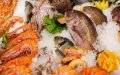comida con microplástico alimentos