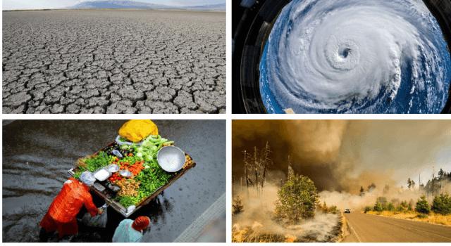 el cambio climatico pasa factura