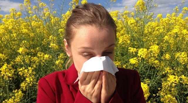 Las elevadas temperaturas han aumentado los niveles de alergia y la situación de anticiclón evita la dispersión de la contaminación.