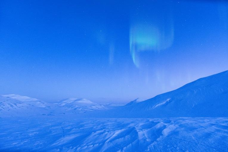 Svalbard auroras