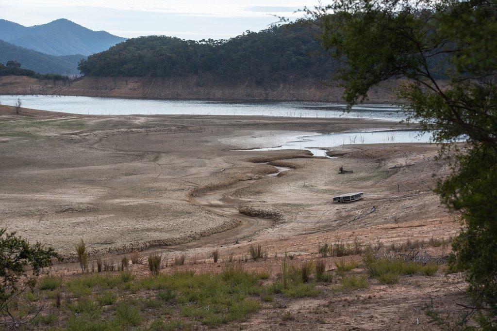 Sequía en verano 2019