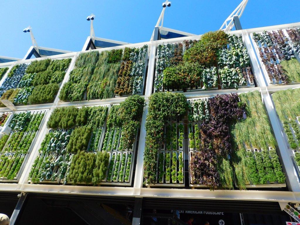 enfriar-ciudades-vegetacion