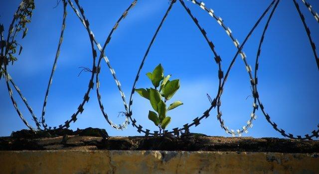 cárcel imprudencias al volante dgt