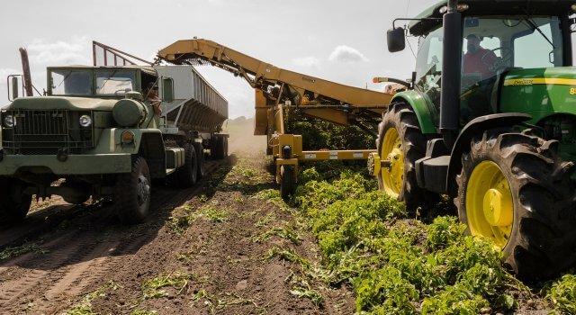 agricultura campo lluvia dana granizo