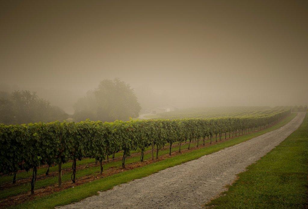 agricultura lluvia