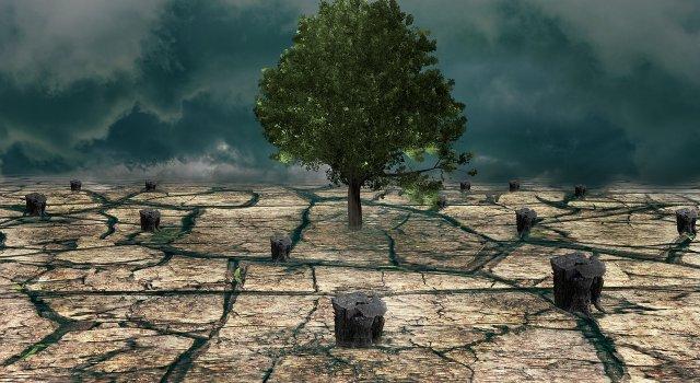 cambio climatico cumbre sobre el clima
