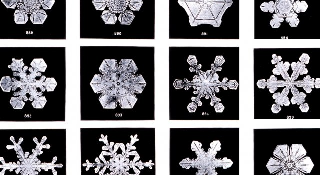 copos de nieve dos iguales