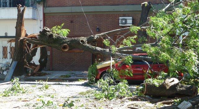 velocidad-viento-riesgos-danos