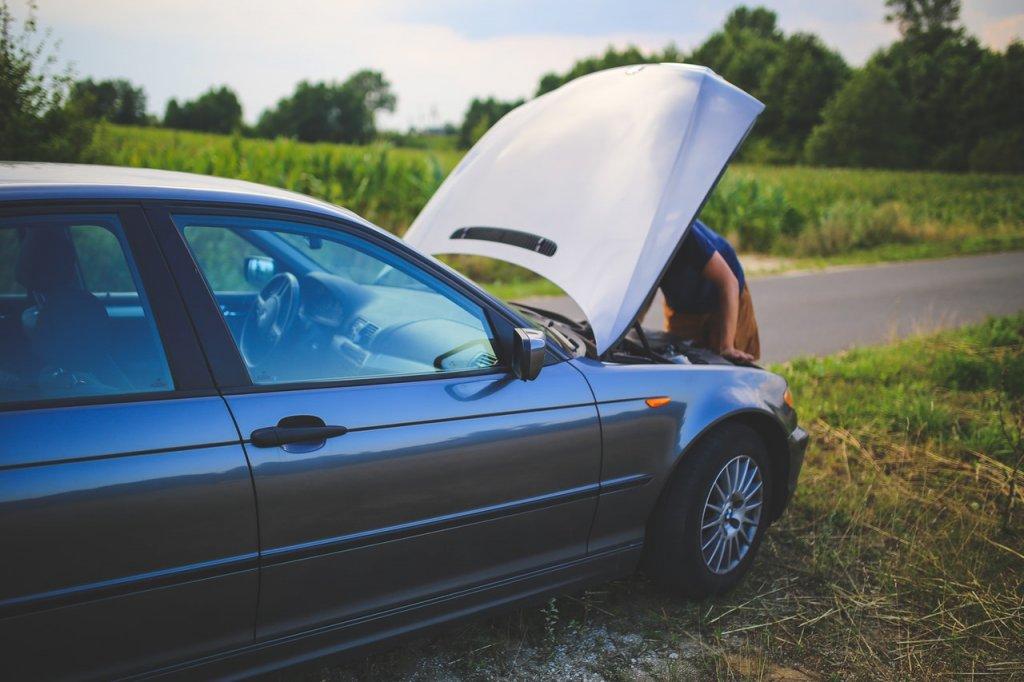 golpe-calor-coche-verano