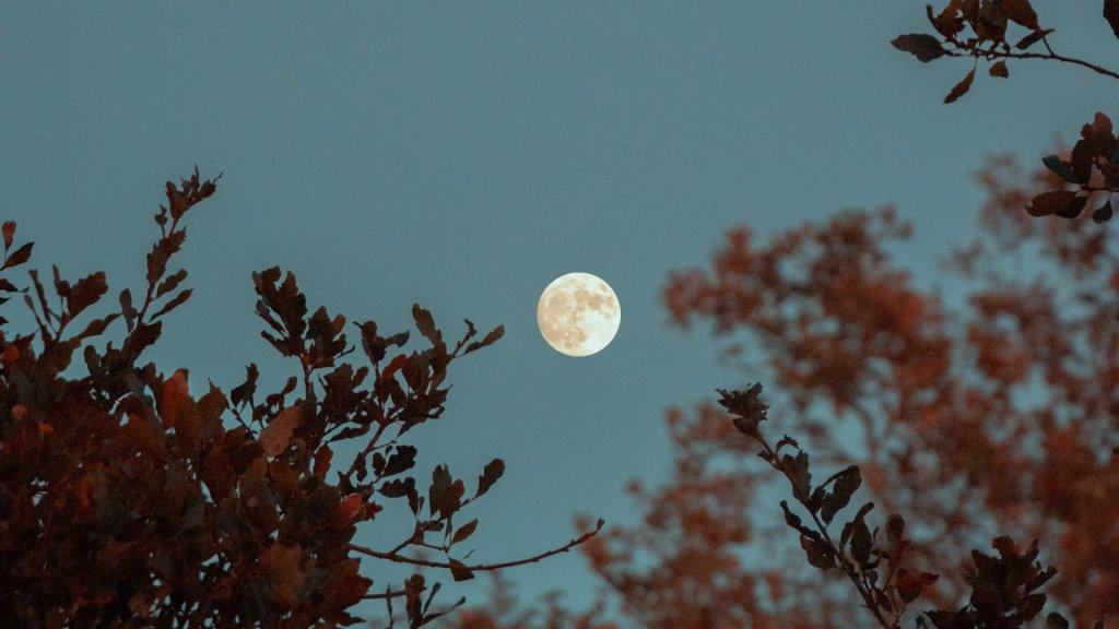Luna llena de julio 2021: la luna del ciervo