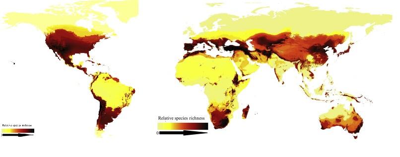 mapa-abejas