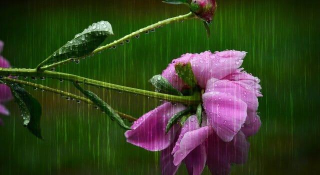 previsión lluvia españa abril