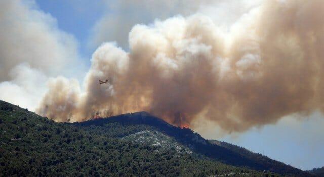 incendios-fuegos-forestales-causas