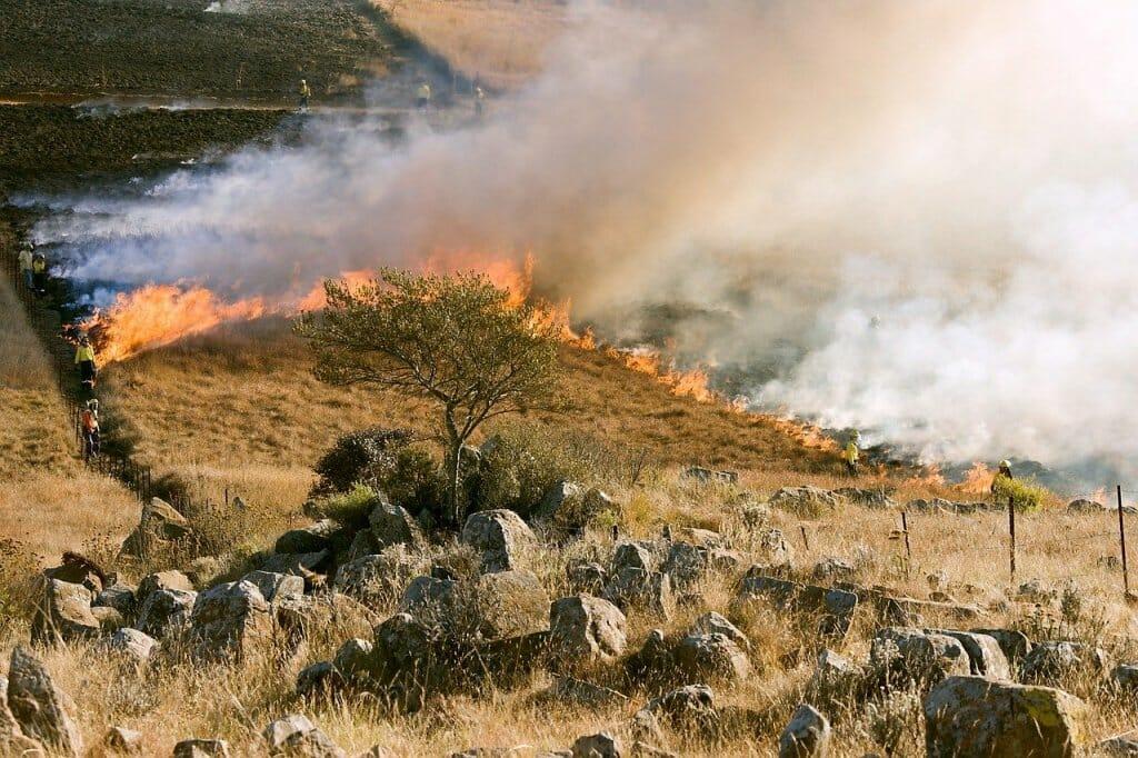 incendios-forestales-verano-espana