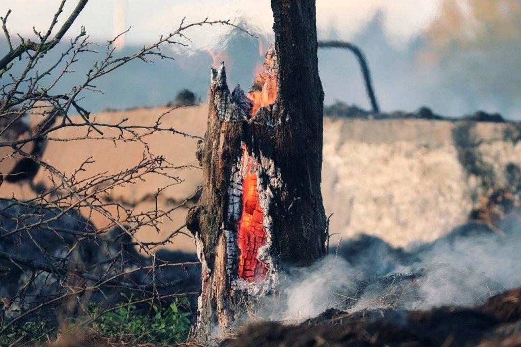 incendios-cambio-climatico-espana
