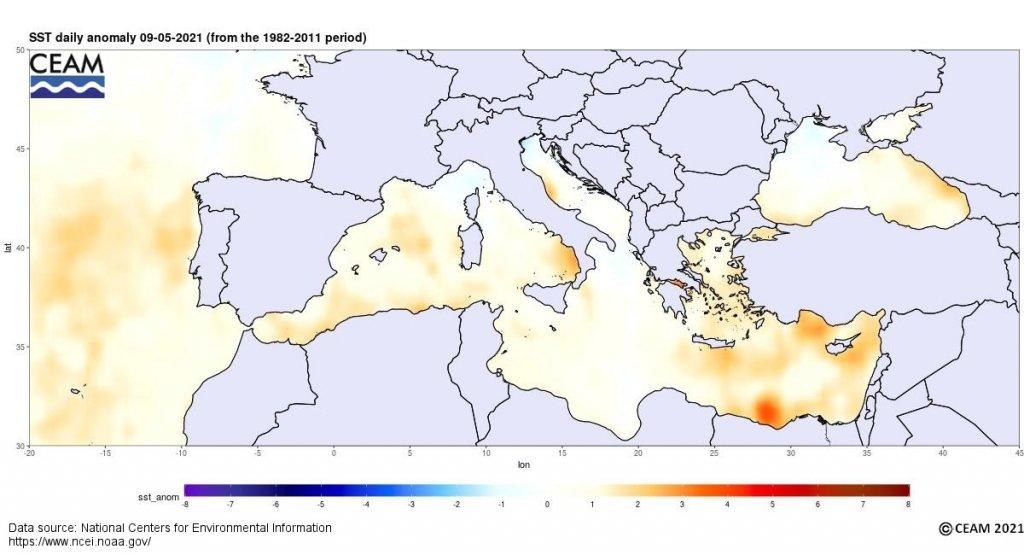 anomalia tempertura agua mar