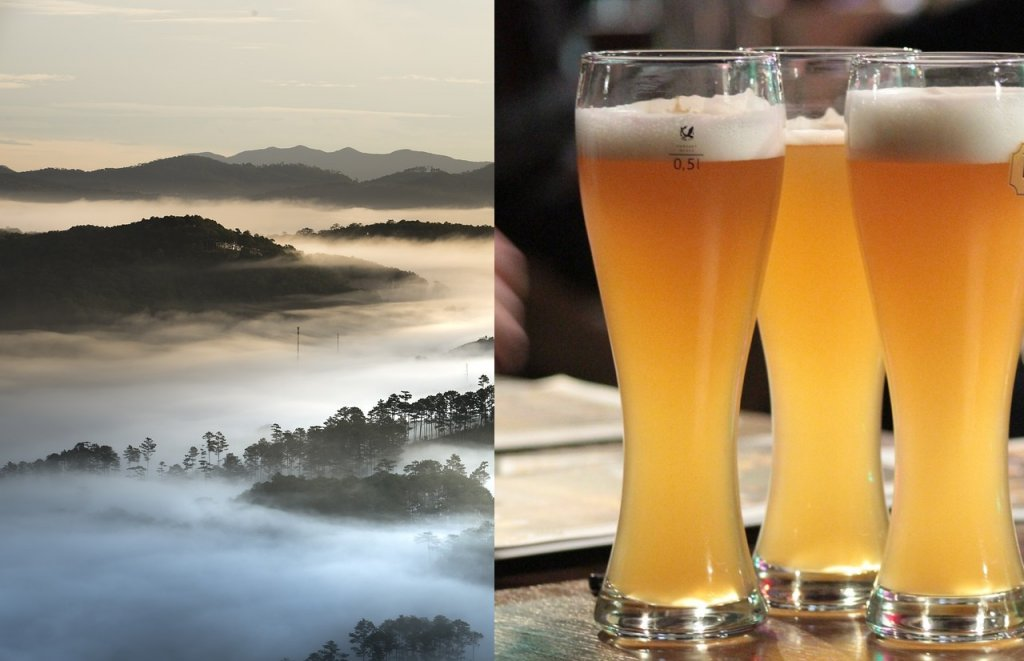 cerveza-niebla-coloides