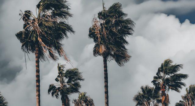 ciclón tropical canarias