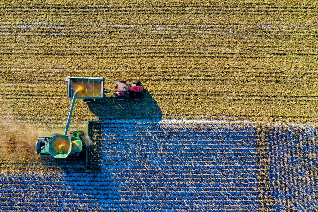 cosecha de otoño durante el equinoccio