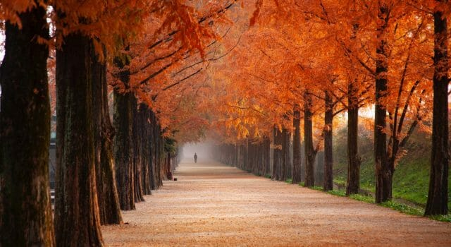 el tiempo en otoño