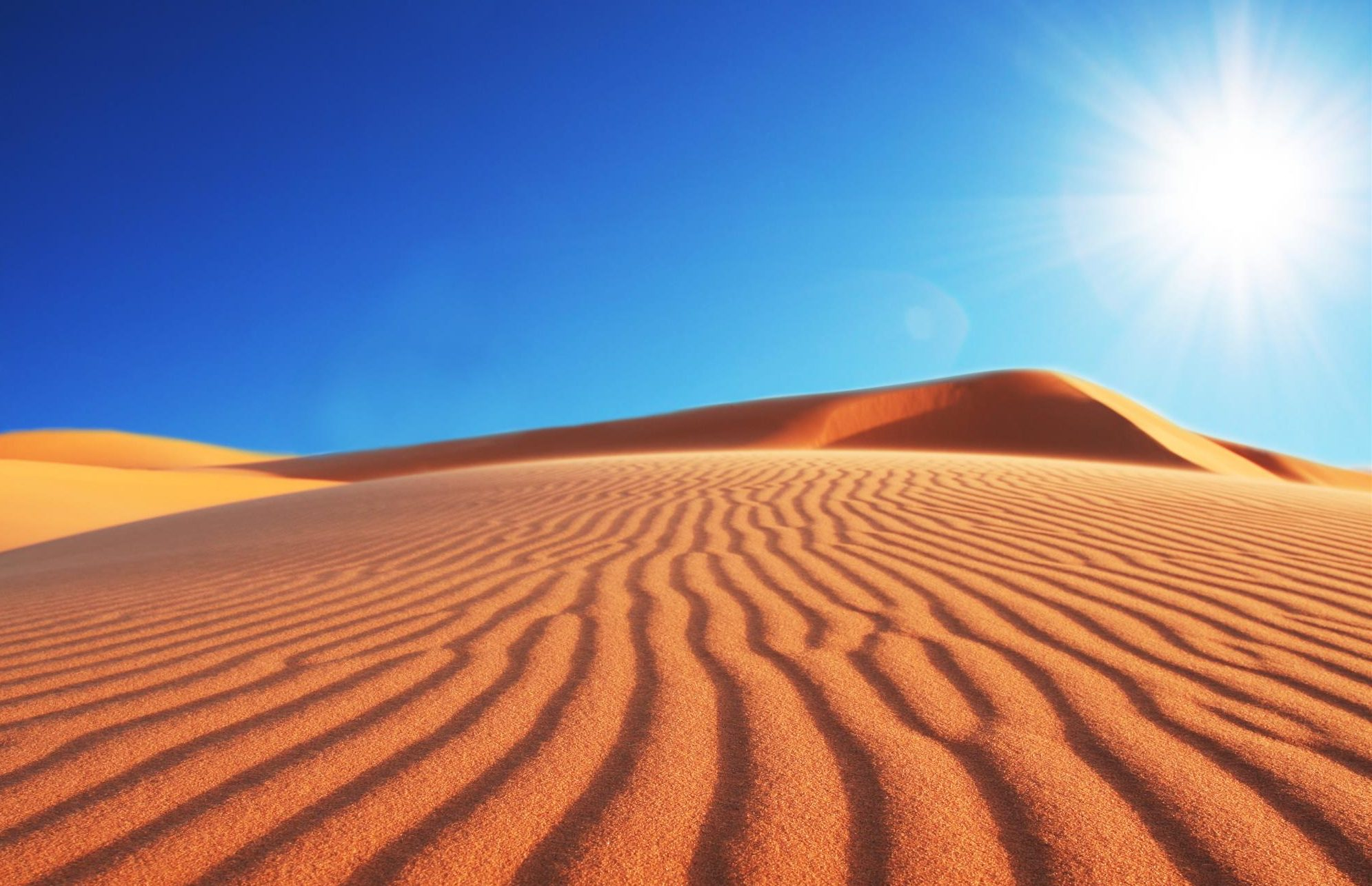 Resultado de imagen de desierto