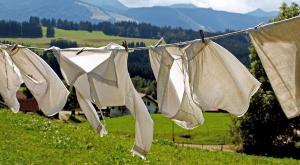 Detergente ecológico: cómo hacerlo paso a paso para cuidar el planeta