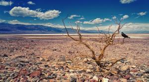 El Valle de la Muerte registra su temperatura más elevada en más de cien años