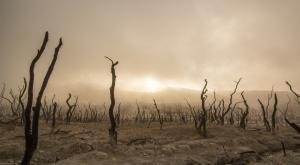 """El """"caos"""" climático recorre el mundo: estos son los fenómenos más destacados de agosto"""