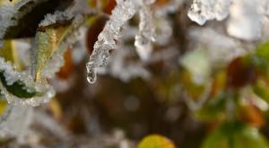 Adiós ola de frío: lluvias y rápido deshielo esta semana