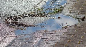 Borrasca Gaetan: rápido deshielo con viento y lluvia