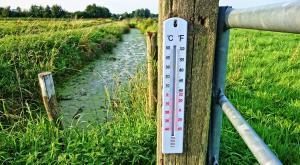 ¡Curioso! España va a registrar 50ºC más que hace dos semanas