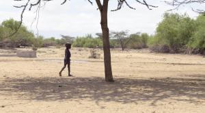 La tragedia de la sequía en el Cuerno de África