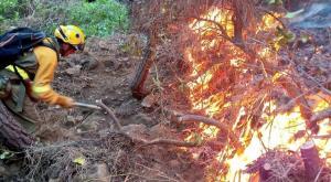 ¿Qué es un incendio de sexta generación? Lo que esconde el fuego de Málaga