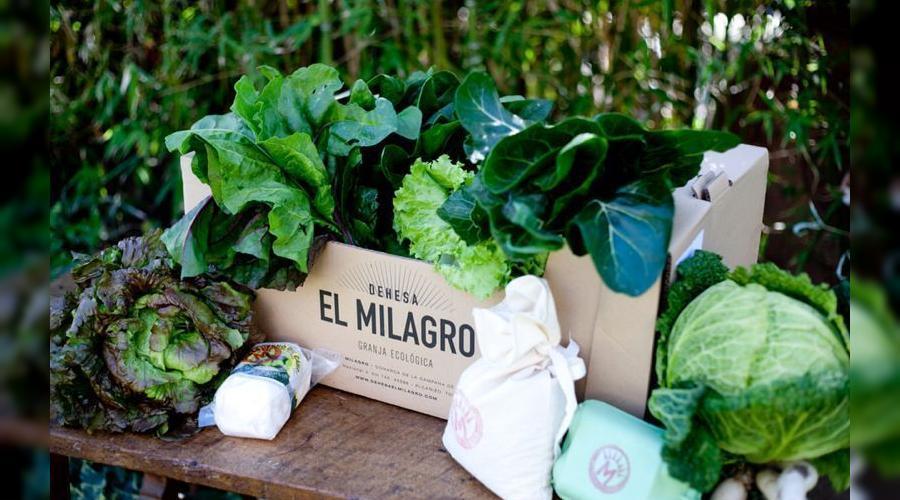 Alimentación local, ecológica y sostenible: así es la Dehesa el Milagro