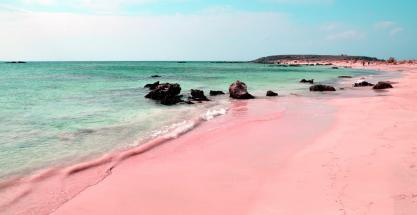 ¿Existen las playas rosas?